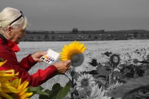 B 2 Bronze Blomstermaleren Linda Jeppesen